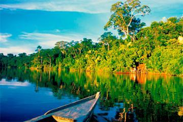 Parque Nacional del Manu, biodiversidad extrema